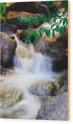 Mountain Stream Wasatch Mts. Utah Wood Print by Utah Images