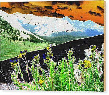 Mountain Summer Wood Print by Peter  McIntosh