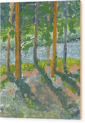 Mountain Valley Wood Print by Rodger Ellingson
