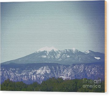 Mountain View Wood Print by Debbie Wells