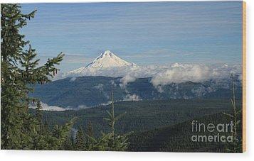 Mountain View Wood Print by Sheila Ping