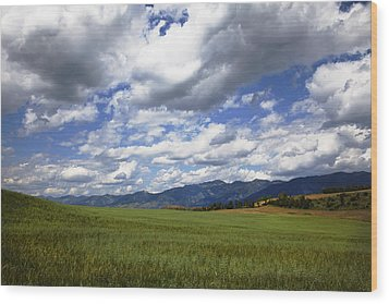 Mountainfarm Wood Print by Mark Smith