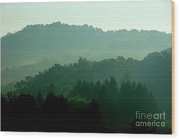 Mountains And Mist Wood Print by Thomas R Fletcher