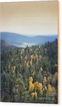Wood Print featuring the photograph Mountains And Valley by Jill Battaglia