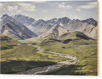 Mountains In Denali National Park Wood Print