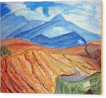 Mountains In Mexico Wood Print by Stanley Morganstein