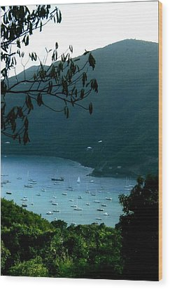 Mountainside Coral Bay Wood Print by Robert Nickologianis