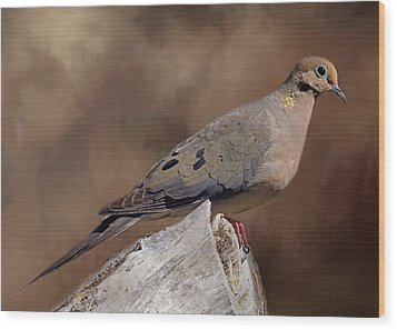 Wood Print featuring the photograph Mourning Dove by Donna Kennedy