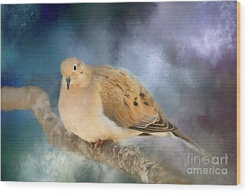 Wood Print featuring the photograph Mourning Dove Of Winter by Darren Fisher