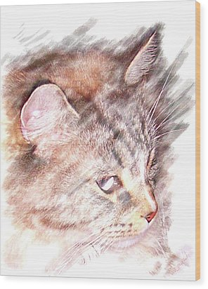Wood Print featuring the photograph Mouser by Barbara MacPhail