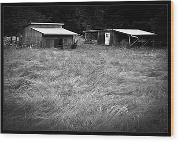 Moving Grass Wood Print by Dale Stillman