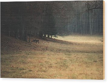 Mprints - Cade's Cove Wood Print by M  Stuart