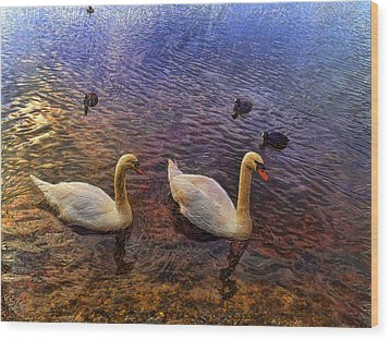 Mr And Mrs Swan Go Viisiting Wood Print