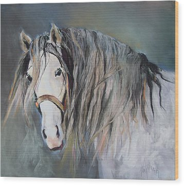 Mr Magnificent Wood Print by Debbie Anderson