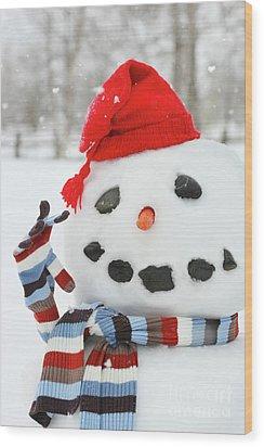 Mr. Snowman Wood Print by Sandra Cunningham