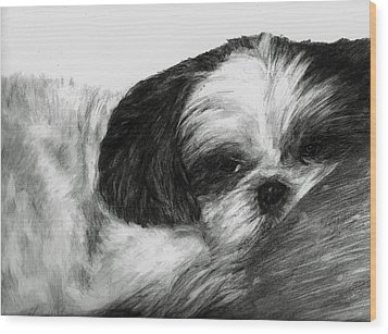 Wood Print featuring the drawing Mr Tibbs by Meagan  Visser