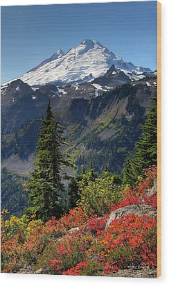 Mt. Baker Autumn Wood Print by Winston Rockwell