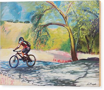 Mt. Bike With Tree Shadows Wood Print by Colleen Proppe