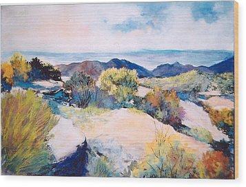 Mt Lemmon View Wood Print by M Diane Bonaparte