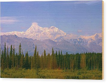 Wood Print featuring the photograph Mt Mckinley 125 Miles Away by Jack G  Brauer
