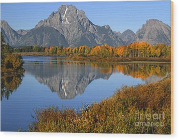 Mt. Moran Fall Reflection  Wood Print by Sandra Bronstein