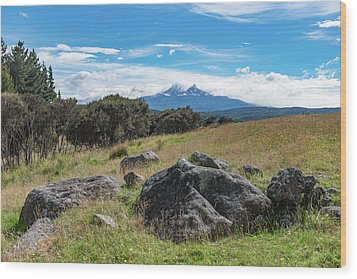 Wood Print featuring the photograph Mt Ruapehu View by Gary Eason