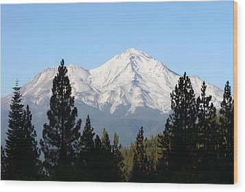 Mt. Shasta - Her Majesty Wood Print by Holly Ethan
