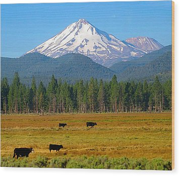 Mt. Shasta Morning Wood Print
