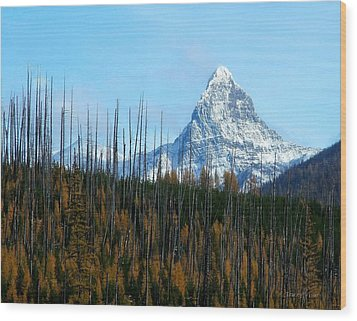 Mt St Nicolas After The Fire Wood Print