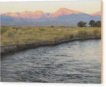 Mt Tom Sunrise Wood Print by Troy Montemayor