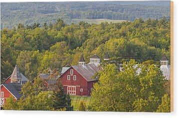 Mt View Farm In Summer Wood Print