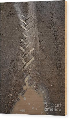 Wood Print featuring the photograph Mud Escape by Stephen Mitchell