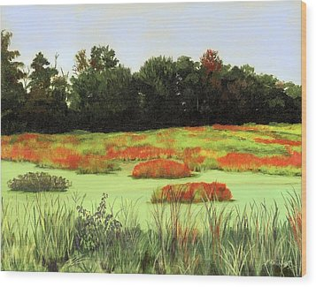 Mud Lake Marsh Wood Print