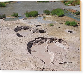 Mud Volcano Area In Yellowstone National Park Wood Print by Louise Heusinkveld