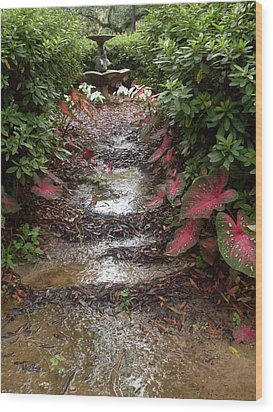 Muddy Fountain Path Wood Print by Warren Thompson