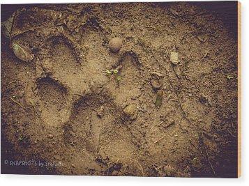 Muddy Pup Wood Print by Stefanie Silva