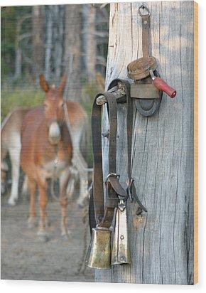 Mule Bells Wood Print