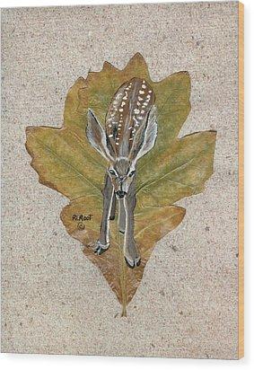 Mule Dear Fawn Wood Print by Ralph Root