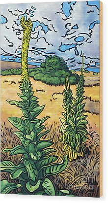 Mullein Wood Print by Fay Biegun - Printscapes