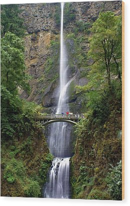 Multanomah Falls Wood Print by Marty Koch