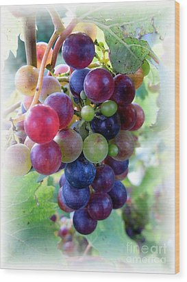 Multicolor Grapes Wood Print by Carol Sweetwood