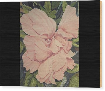 Multipetaled Pink Hibiscus Wood Print by Hilda and Jose Garrancho