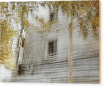 Wood Print featuring the photograph Multiplex Fall by Linde Townsend