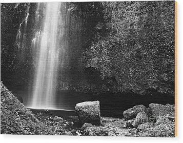 Multnomah Falls Base Wood Print by Charmian Vistaunet