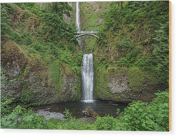 Multnomah Falls In Spring Wood Print by Greg Nyquist