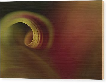 Mum Curl Abstract Wood Print