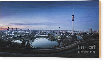 Wood Print featuring the photograph Munich - Watching The Sunset At The Olympiapark by Hannes Cmarits