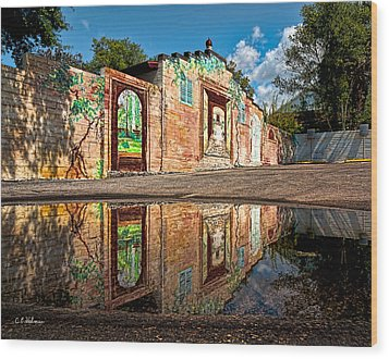 Mural Reflected Wood Print by Christopher Holmes
