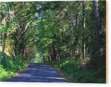 Wood Print featuring the photograph Murphy Mill Road - 2 by Jerry Battle