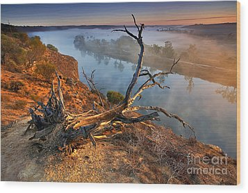 Murray River Dawn Wood Print by Bill  Robinson